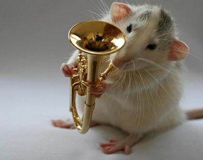 http://zhivhum.ru/wp-content/uploads/2008/08/zhivhum-muzikant3.jpg